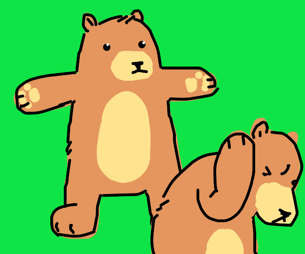 One bear asserts dominance over the others