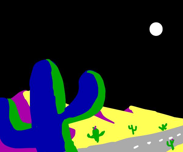 nighttime road in desert