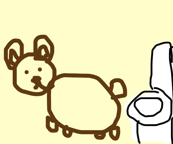 Charmin bear struggles to wipe their tushy.