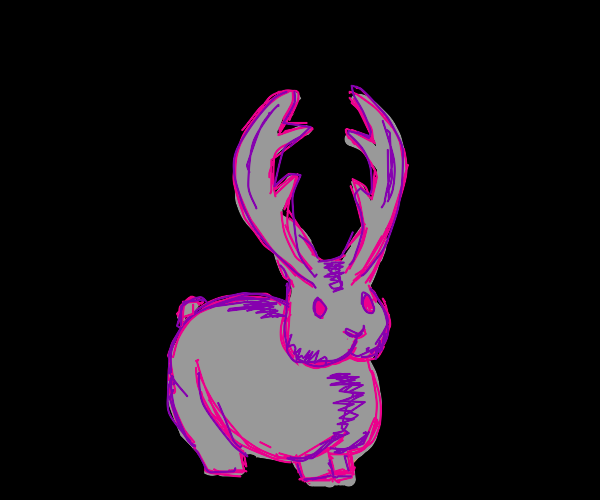 The strange and mysterious jackalope