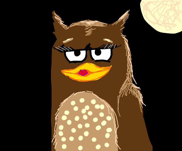 Duckface Owl