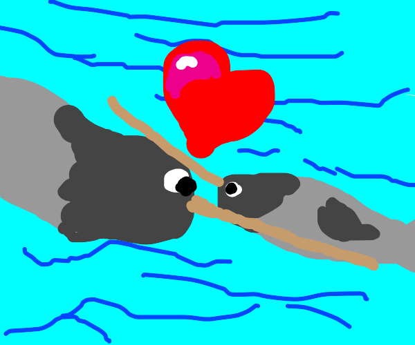 narwhal loves their mother