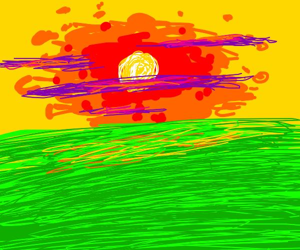 field under a sunset