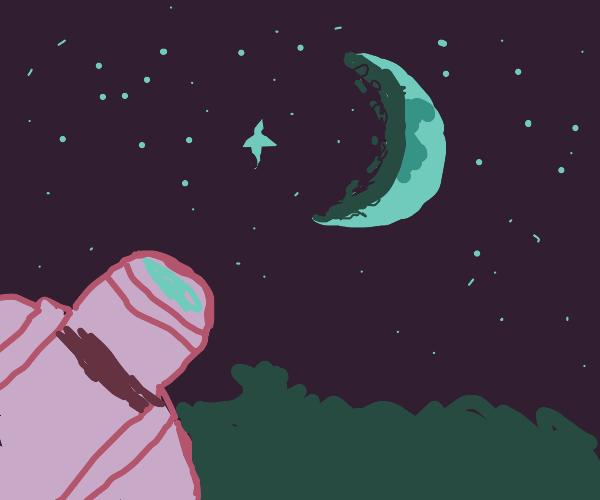 moon in a starry sky