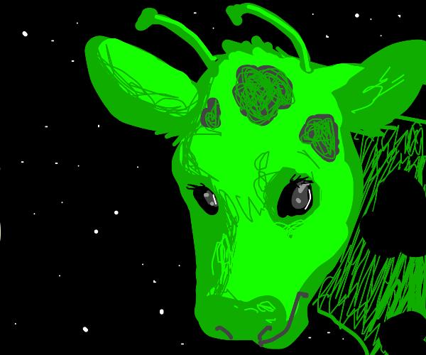 alien-cow