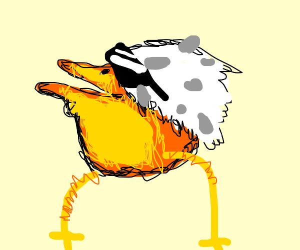 Illegal Pelican