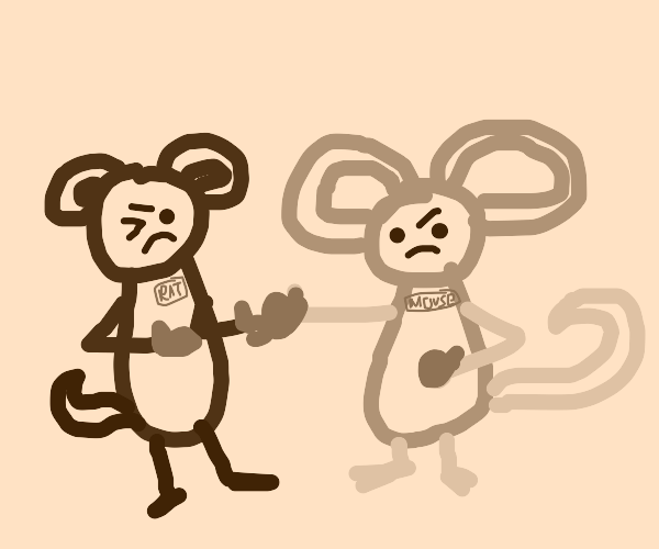 A mouse and a rat in a boxing fight