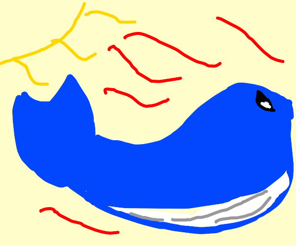 Blue Whale in a Heatwave