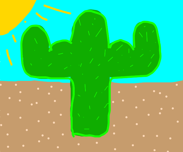 Macho Cactus