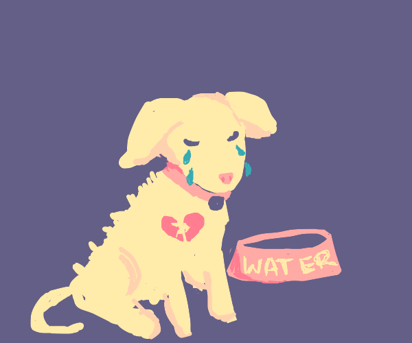 abused and sad doggo wants water :(