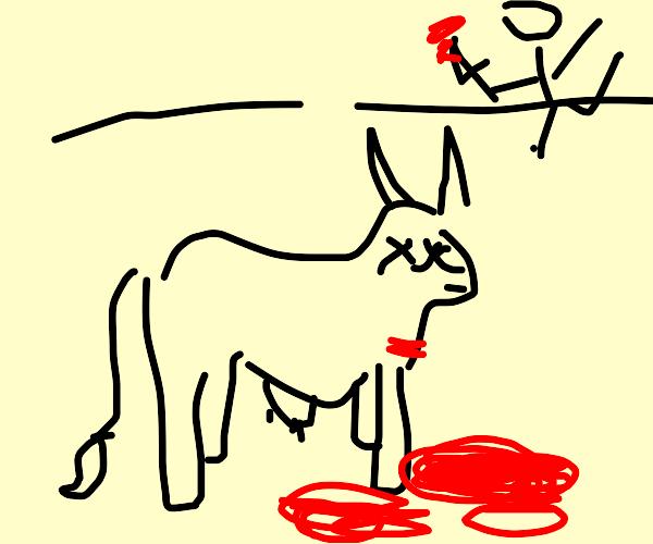 cow murderer runs away from crime scene