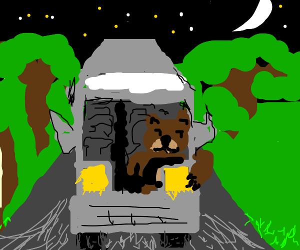 a bear driving a bus in the dark