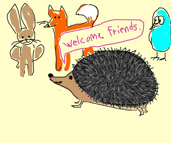 hedgehog having a birthday