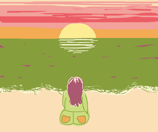 girl watching the sun set at the beach