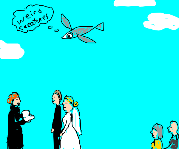 flying fish confused by human traditions
