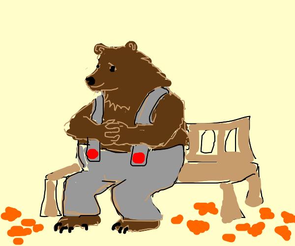 Old man bear