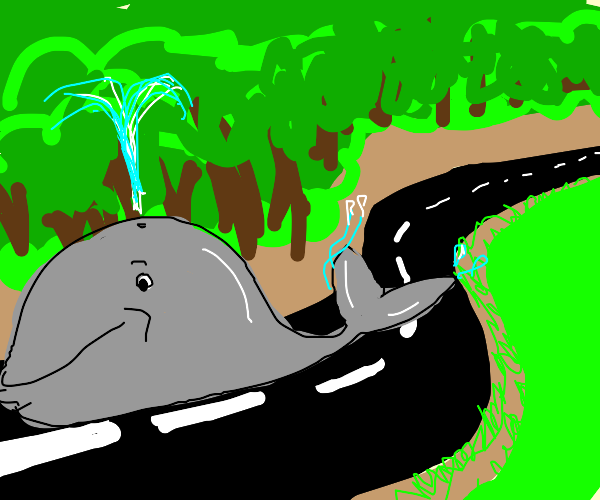 whale on road