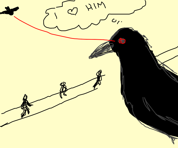 nobody knows bird is in love