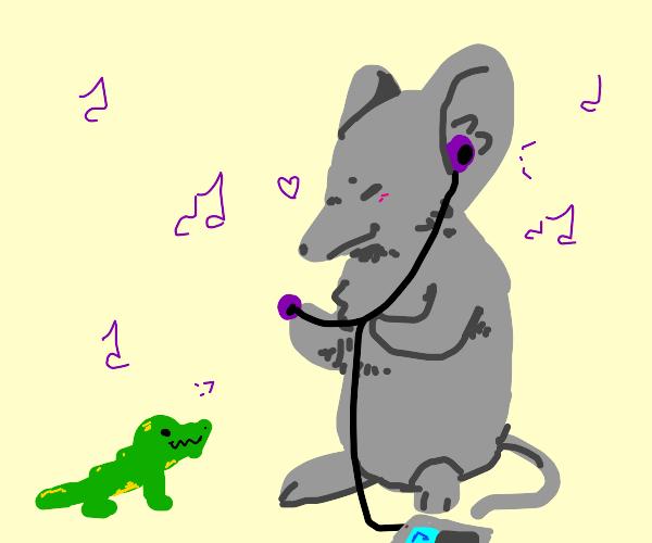 a big rat eats little croc listening to music