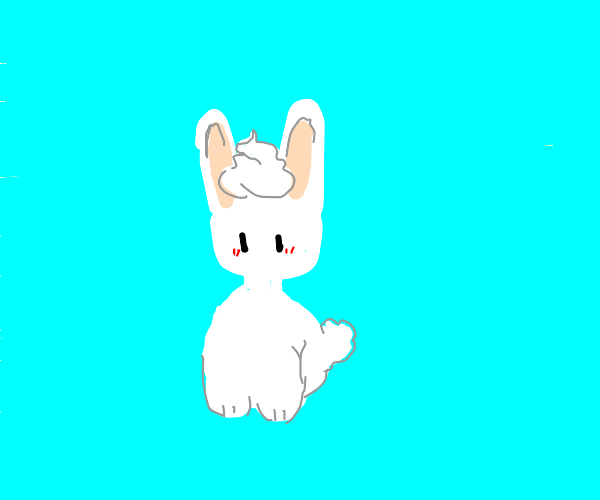 A rabbit getting whipped cream on his head