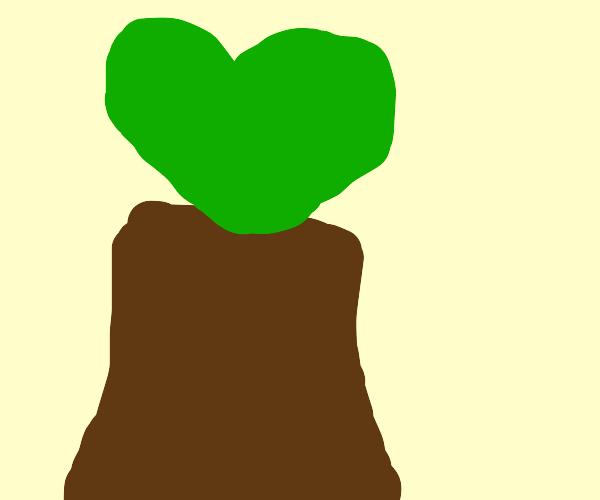 Heart-shaped Trees