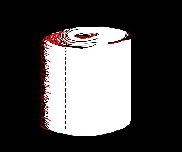 Stylish shot of toilet paper
