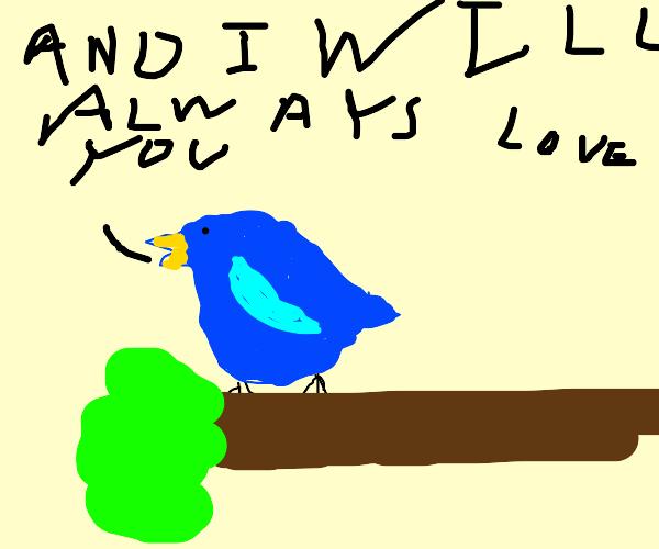 Bird singing Whitney Houston