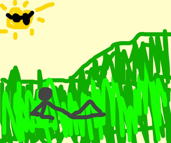 lazy landscape