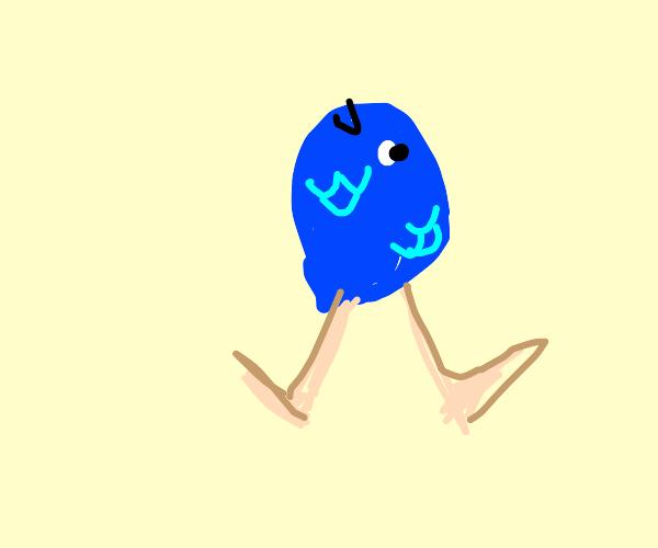 Anti-Mermaid (Fish head, human body)