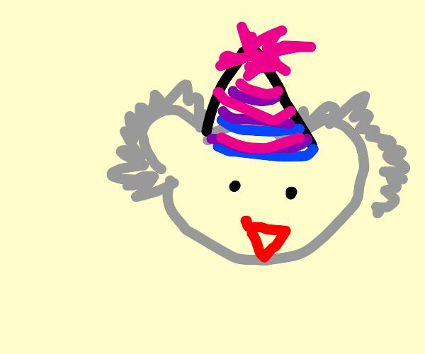 Koala with a hat