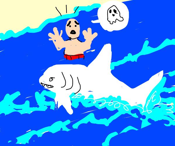 Spooky Shark