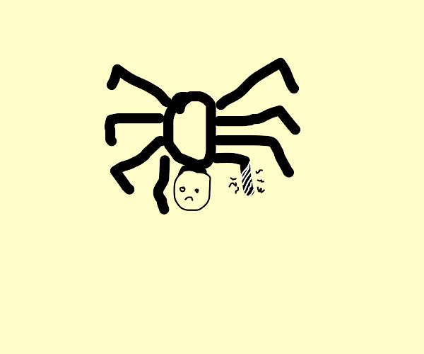 Injured Tarantula