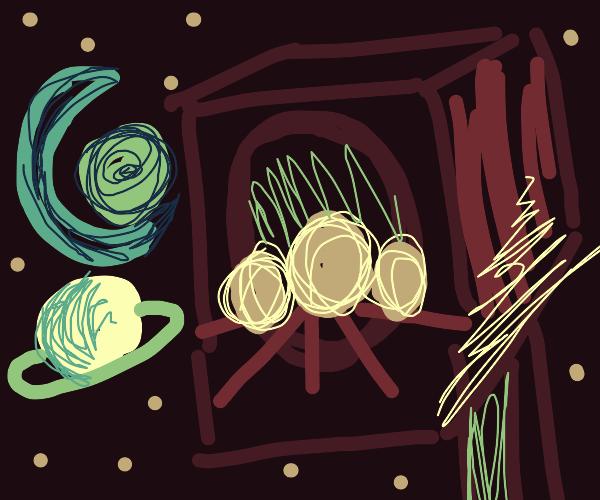 space birdhouse