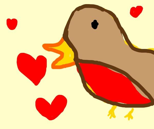 The bird will always love... youuuuuuuuu