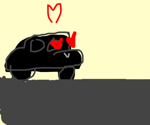 black and grey car are in love
