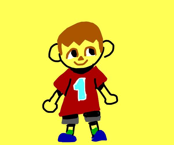 Animal Crossing player