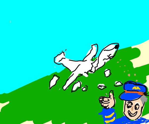 Terrible plane crash; pilot is thumbs up!