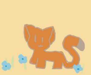 Cat With A Long Tail In A Flower Field