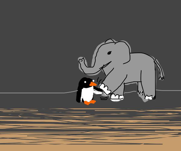 Penguin and elephant shake limbs
