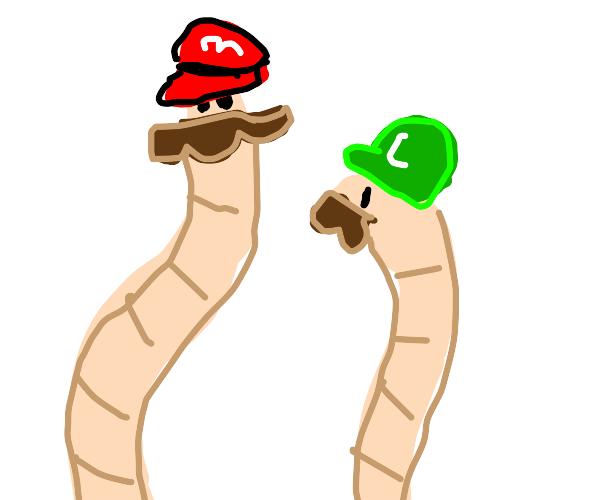 Worm Mario and Luigi