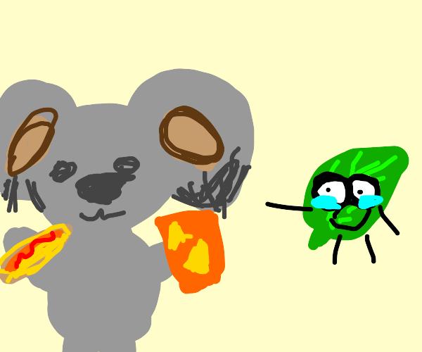 Koala leaves eucalyptus for hot dog & doritos