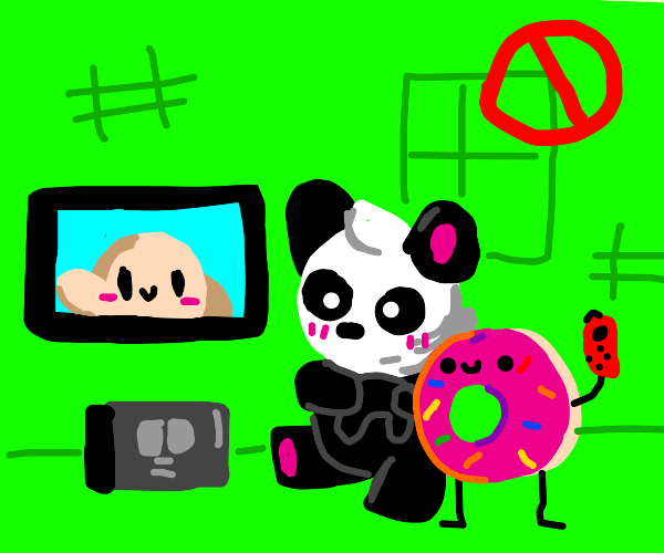 donut play on nintendo switch with panda