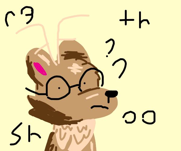 Reindeer confused by phonics