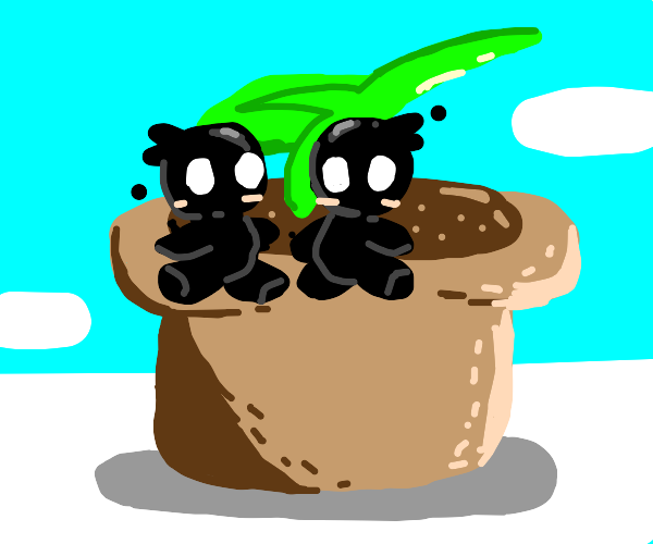 two little shadow people sit on a pot plant