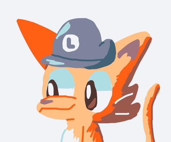 Cat wearing a Luigi cap