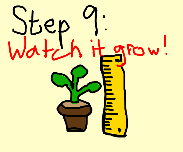 Step 8: give your new pet plant some water