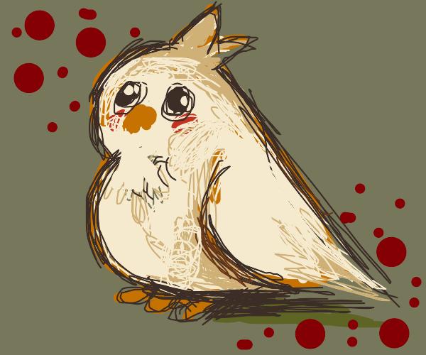 fluffy birb