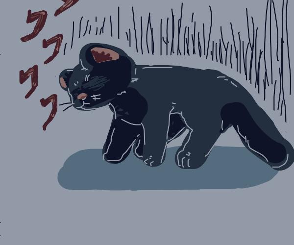 Eyeless black cat with dark energy