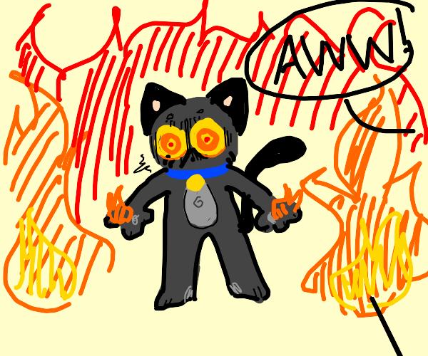 aww, a little firebending kitty!