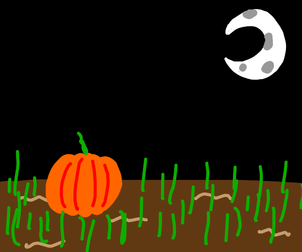 pumpkin in a field at night under the moon